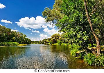 mooi, zomer, rivier, dag