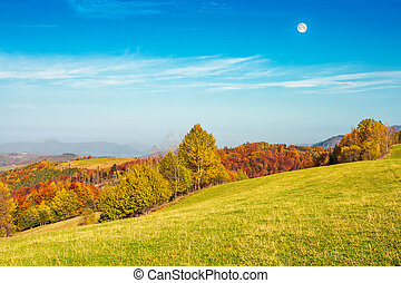 moon above autumn landscape with grassy meadow - autumn...