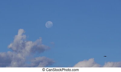 Moon and blue sky with clouds