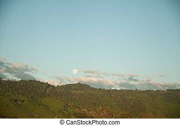 Moon and outback forest scenery in Australia