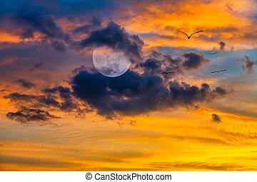 Moon Birds Fantasy Clouds