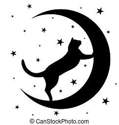 moon., chat noir