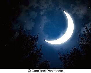 Moon - Night fairy tale - bright moon in the night sky