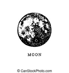 Moon image on white background. Hand drawn vector illustration