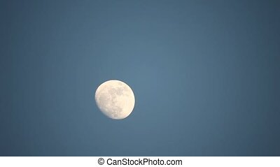 moon in the afternoon sky