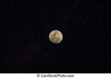 Moon in the night.