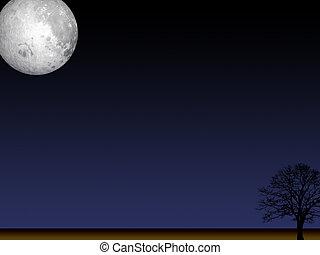 Moon in the night - Moon in the dark night