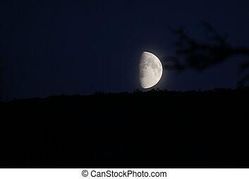 Moon On Blue