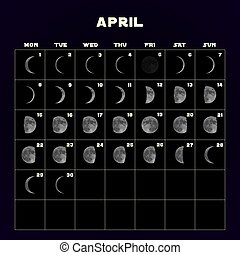 Moon phases calendar for 2019 with realistic moon. April. Vector.