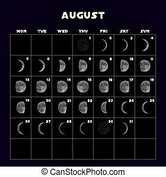 Moon phases calendar for 2019 with realistic moon. August. Vector.