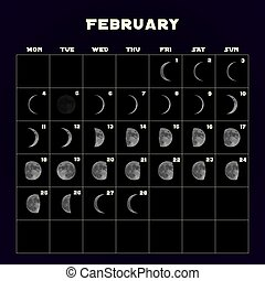 Moon phases calendar for 2019 with realistic moon. February. Vector.