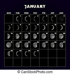 Moon phases calendar for 2019 with realistic moon. January. Vector.