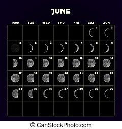Moon phases calendar for 2019 with realistic moon. June. Vector.