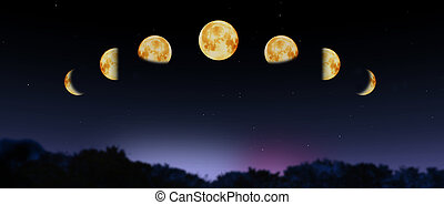 moon phases - composition with moon phases
