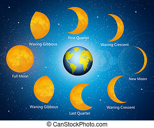 Moon phases - illustration of moon phases