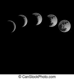 Moon Phases. Vector illustration