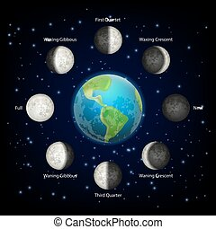 Moon phases vector realistic illustration
