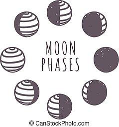 Moon phases vector set. - Moon phases moonlight dark new...