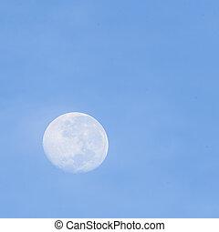 moon., pieno