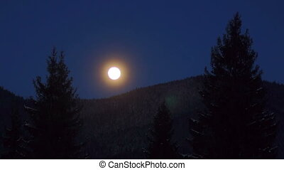 Moon, pines mountains