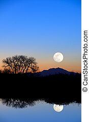 Fantasy Reflected Riparian Tree and Full Moon in Evening Blue at Wildlife Refuge
