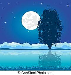 Moon riverside night