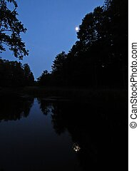 Moon Shining at Night Sky in Dark Forest Trees Reflecting on Water Surface