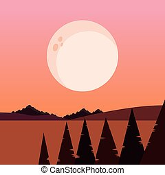 moon trees pine night natural landscape