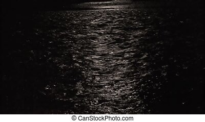 Moonlight night in the forest on the river