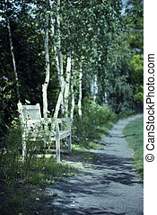 Moonlight on footpath and bench in the garden