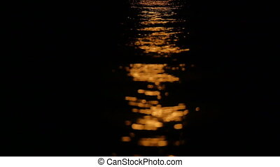 moonlight reflections on the water 4k
