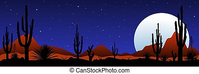 Moonlit night in the mexican desert - A stony desert at...