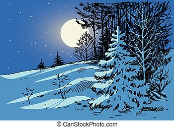 Vector drawing a frosty winter night.
