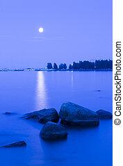 Moonlit path on the lake at night