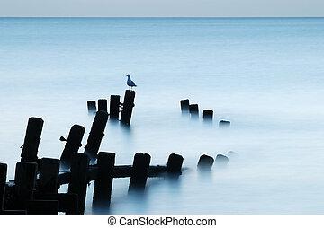 Calm sea lit by moonlight, Hopton-on-Sea, Norfolk, UK