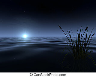 Moonrise at the Lake - A spooky-looking moon rises above the...