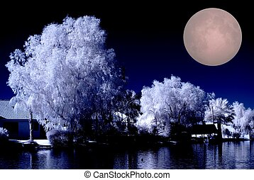 Luxury desert lake homes in infrared color with the full moon rising