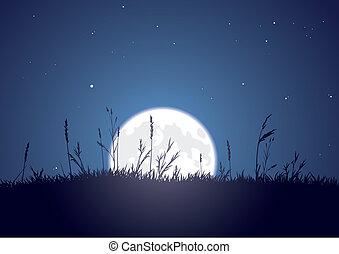 moonrise, grasbedeckt