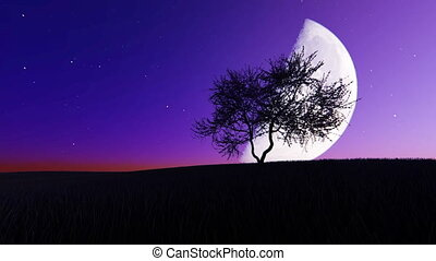 Moonrise on the background of a tree
