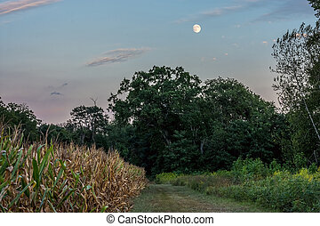 Moonrise Over Meadow - The Moon rises over this meadow in...