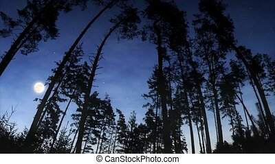 Moonrise over the woods - Timelapse video of rising full...