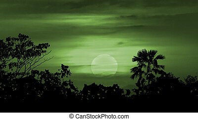 Moonscape Silhouette Ilustration - Moonscape collage...