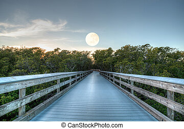 Moonset over the Boardwalk leading to Clam Pass at sunrise