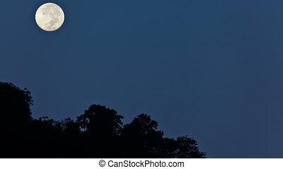 Moonset - Moon set