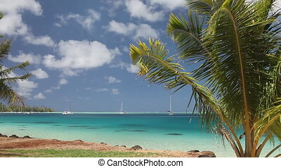 Moorea - Shallow Lagoon of Moorea Island in French...