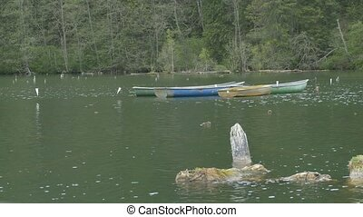 Moored Boats on Lake - Wood boats tied on the waving lake.