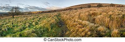 Moorland Panoramic - Outdoor panoramic of English moorland