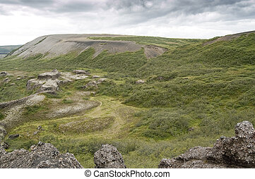 Moorland - Shrubland in a volcanic area in Iceland