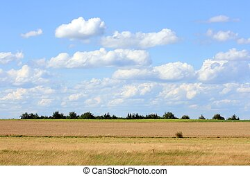 Moorland - this image shows a moorland with sky and clouds