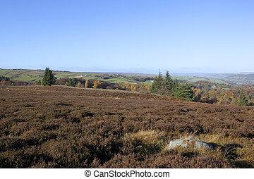 moorland vista - a beautiful moorland vista with heather...